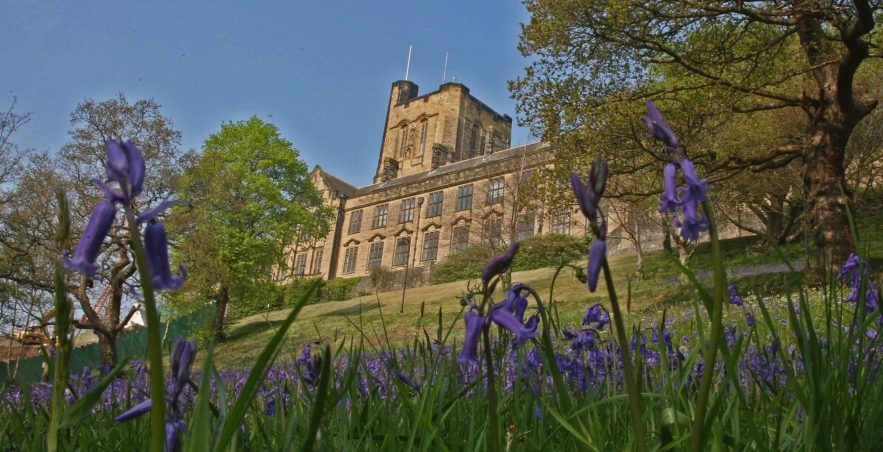 Bangor-University-and-Bluebells.jpg